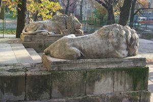 lionsStoneLviv2